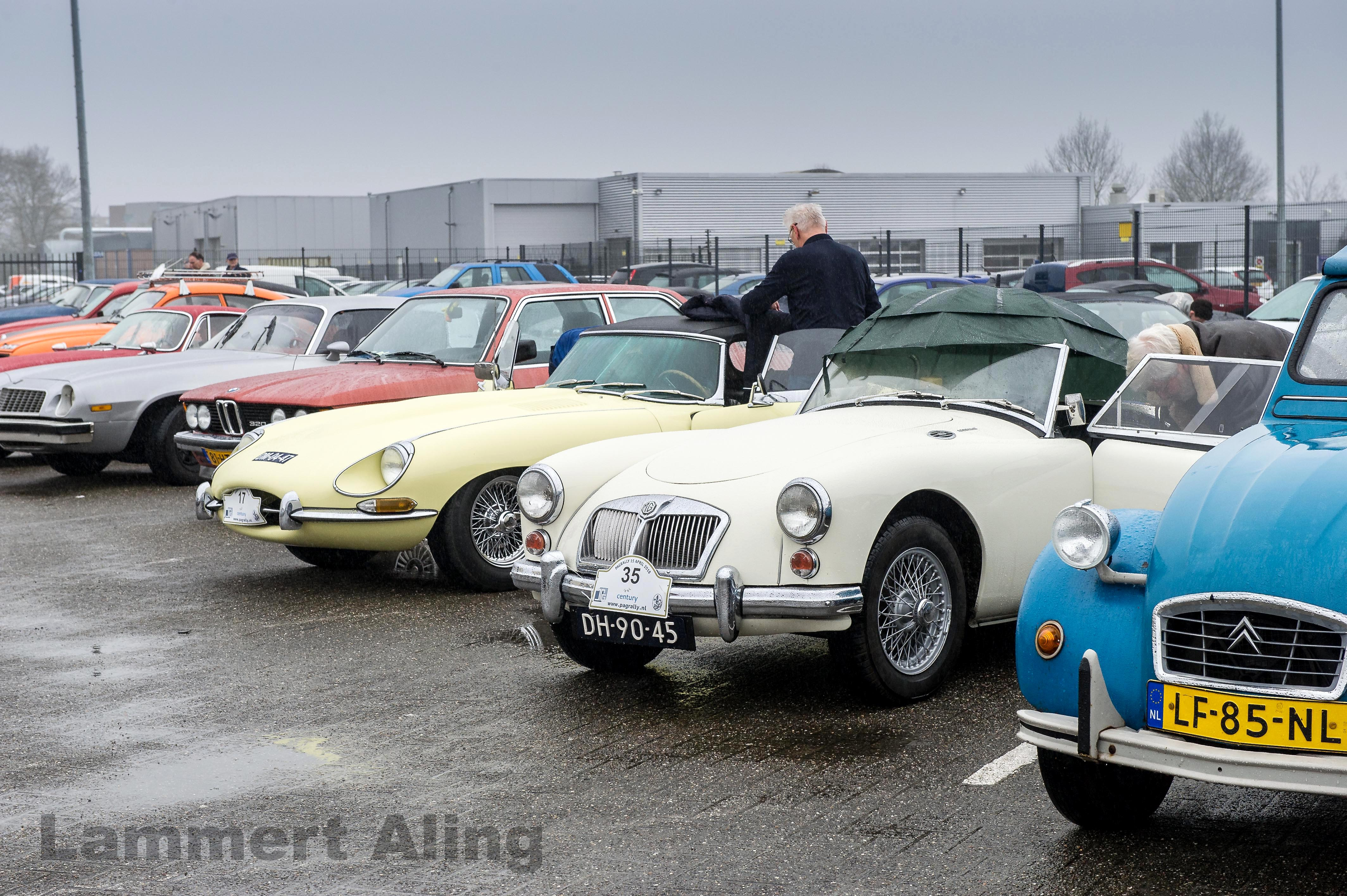 Pagrally2018-4380